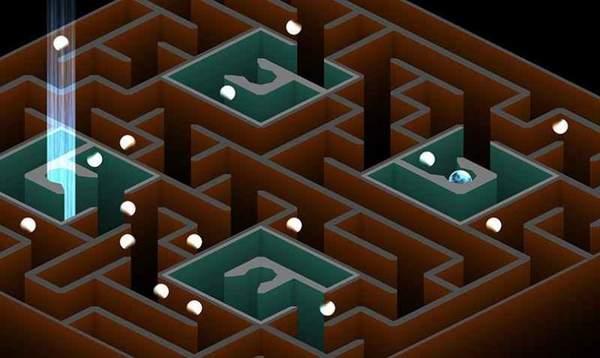 我是迷宮3黃豆計劃